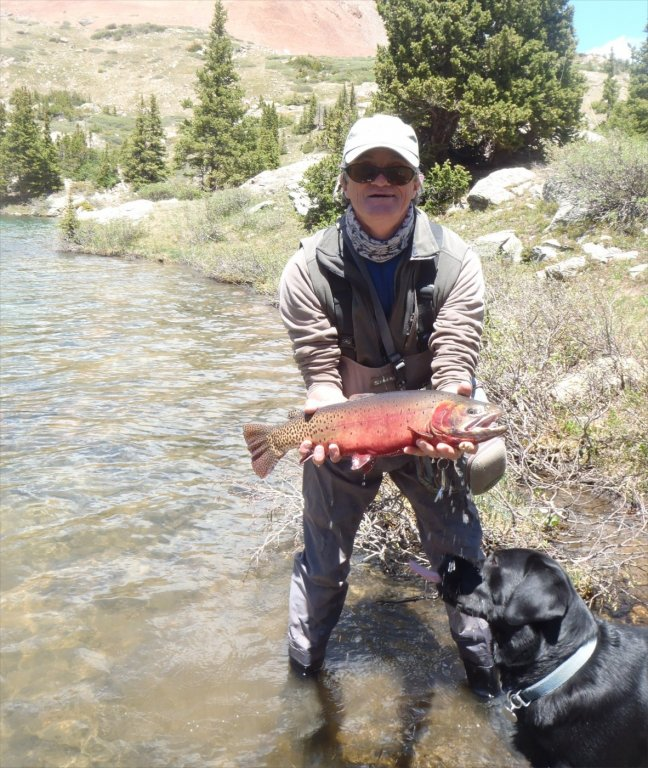 Flyfish colorado guided flyfishing in central colorado for Camping and fishing in colorado