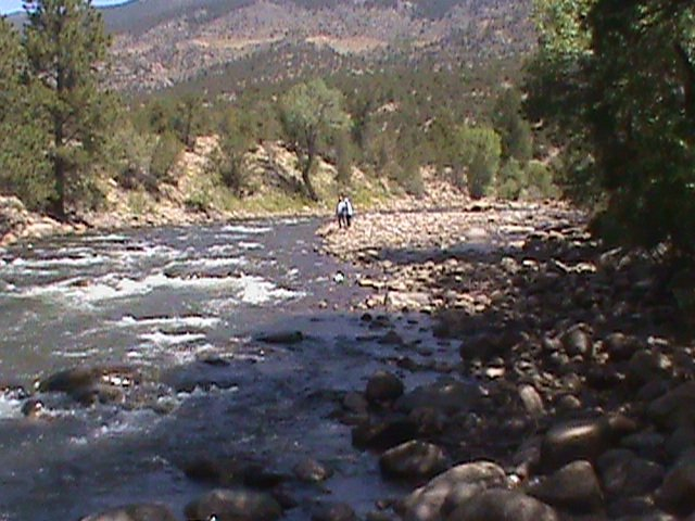 Flyfish Colorado - Guided Flyfishing in central Colorado ...