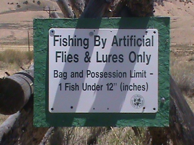 Flyfish colorado guided flyfishing in central colorado for Colorado fishing limits