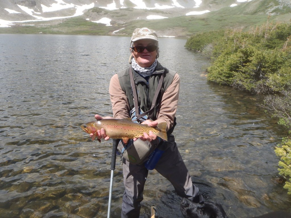 Flyfish colorado guided flyfishing in central colorado for Willow creek fishing