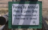 Fishing regulations at Hayden Meadows